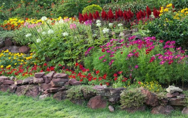 ogrod przy domu